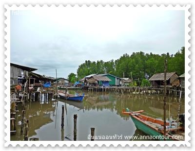 หมู่บ้านชาวประมงปลูกหลังป่าโกงกาง