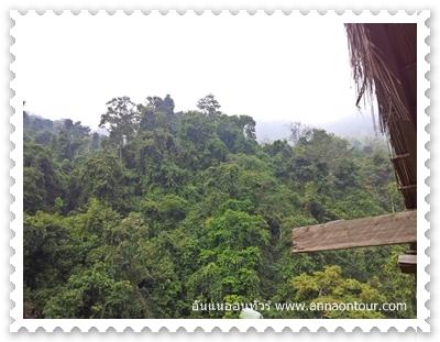 ธรรมชาติในเขาเขียว