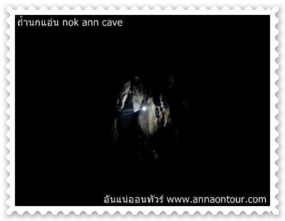 แสงไฟในถ้ำนกแอ่น