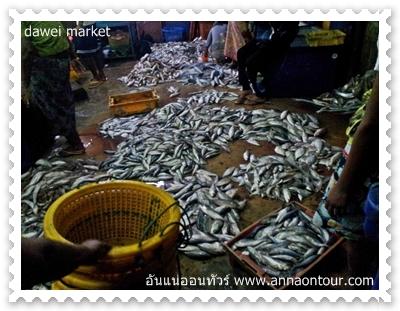 ปลาสดจากทะเล