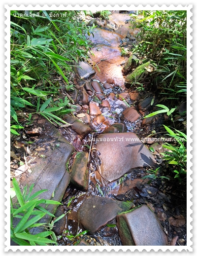 ธรรมชาติระหว่างการเดินเที่ยวชมน้ำตกเจ็ดสี