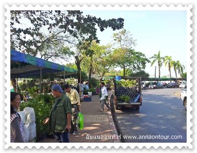 ทุ่งนาเชย สวนสาธารณะจันทบุรี