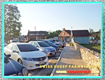 ลานจอดรถ swiss sheep farm ชะอำ