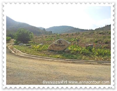 Hua Hin Hills Vineyar