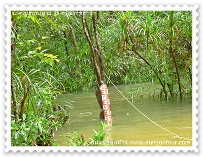 ปริมาณน้ำที่มากในช่วงหน้าฝน