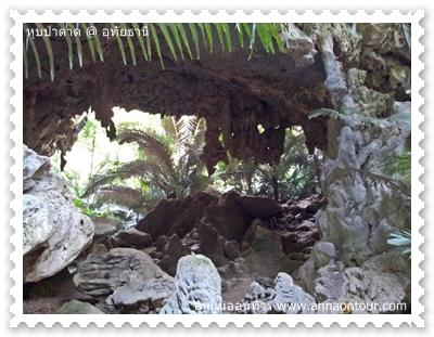 ลานหินที่เป็นโพรงในหุบป่าตาด