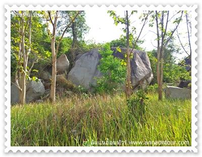 หินรูปทรงรต่าง ๆ มากมาย